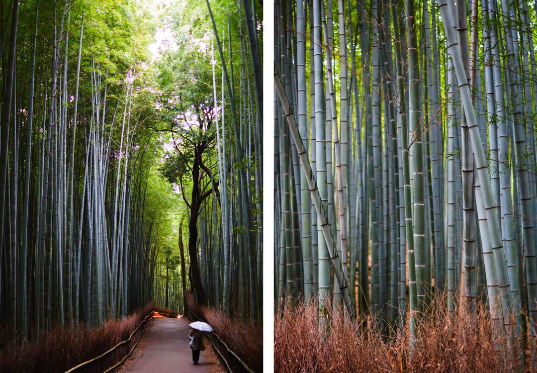 Arashiyama_1