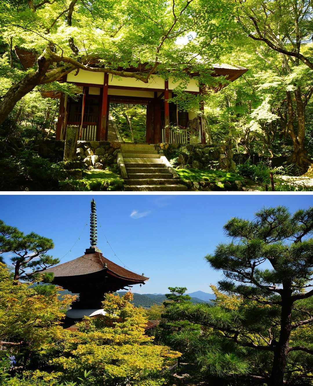 Arashiyama_4