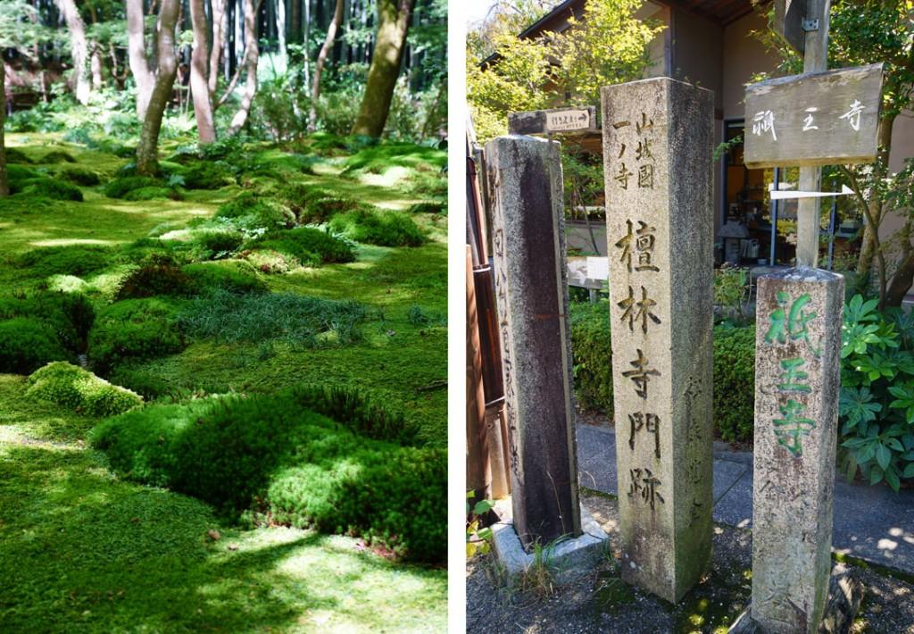 Arashiyama_5