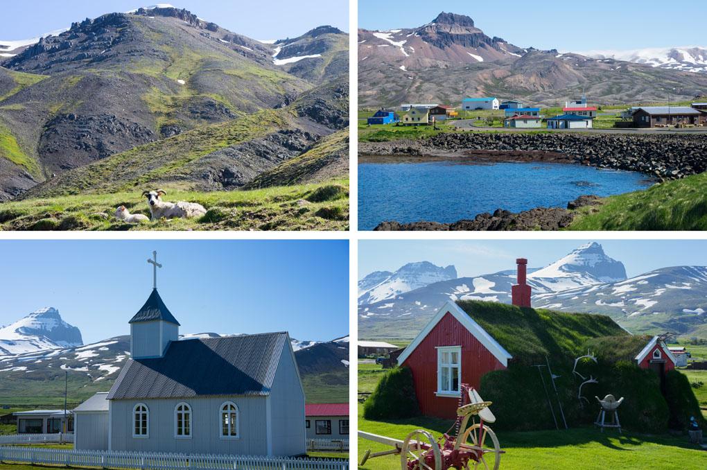 puffins IJsland