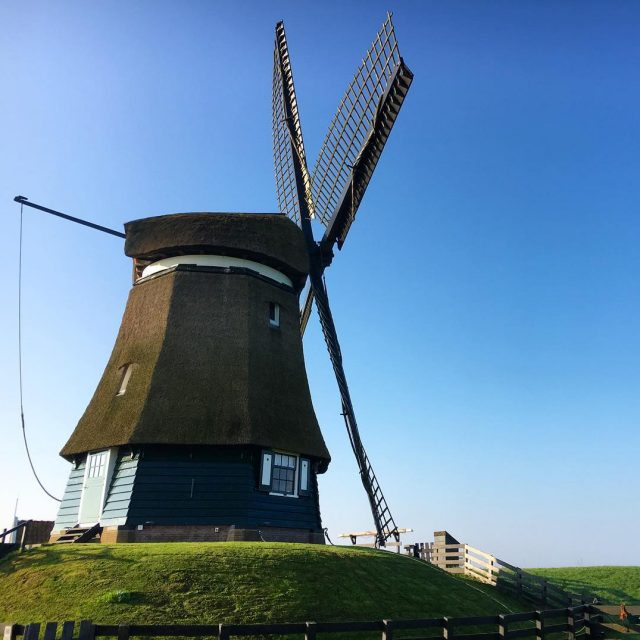 Does it get any more Dutch than this? Im inhellip