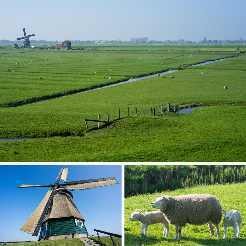 natuur Laag Holland