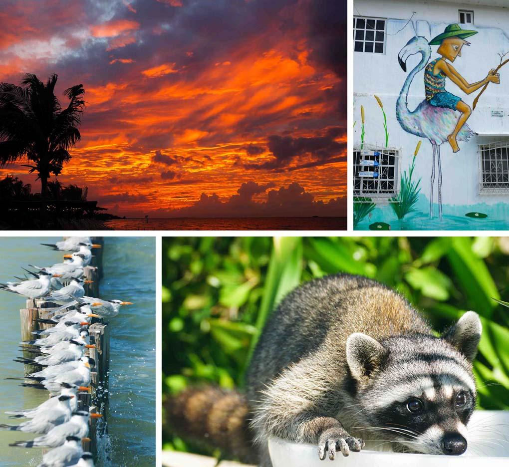 Isla Holbox Mexico