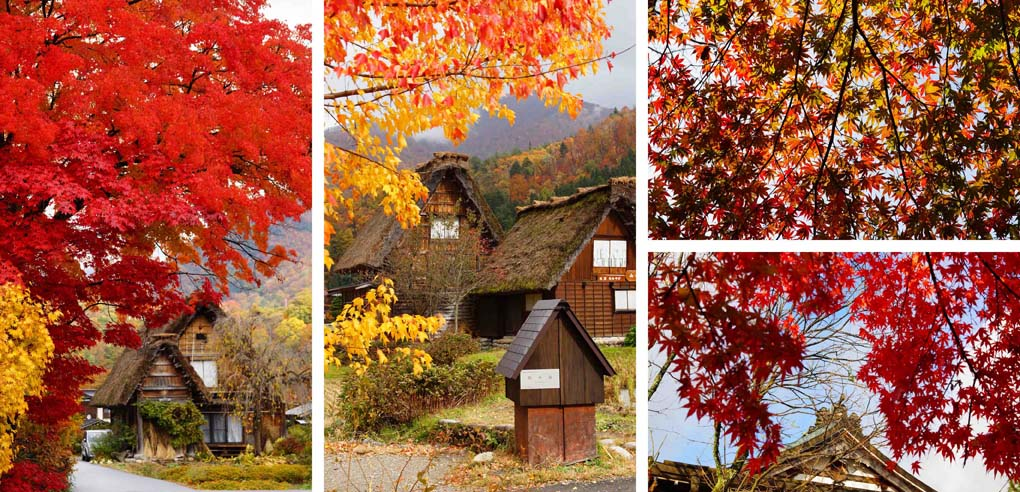 Japan herfst