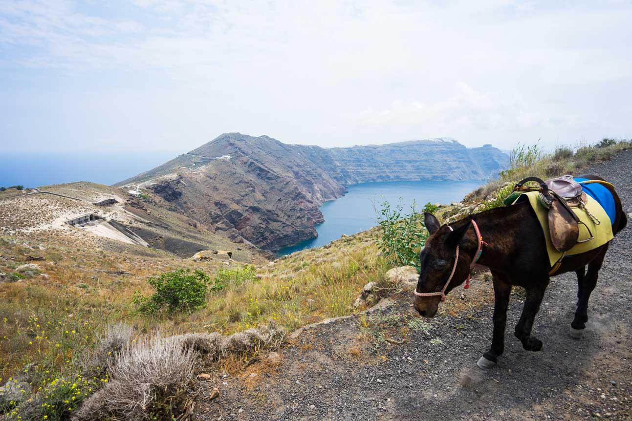 Hike Fira Oia Santorini