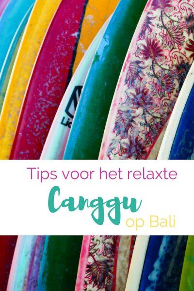 tips Canggu Bali