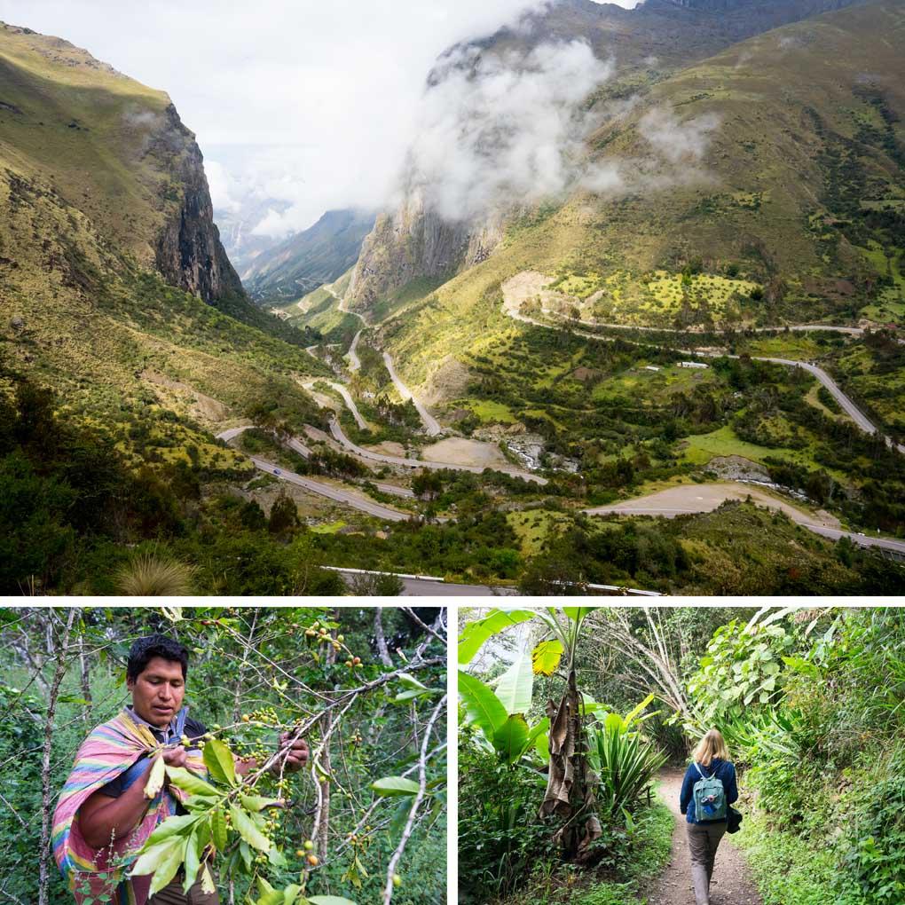 Koffieroute-Peru