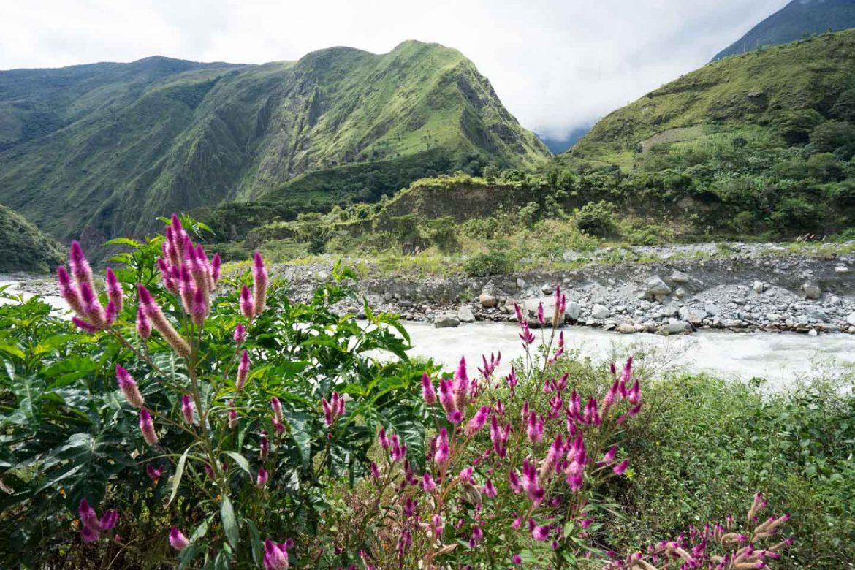 Koffieroute Peru