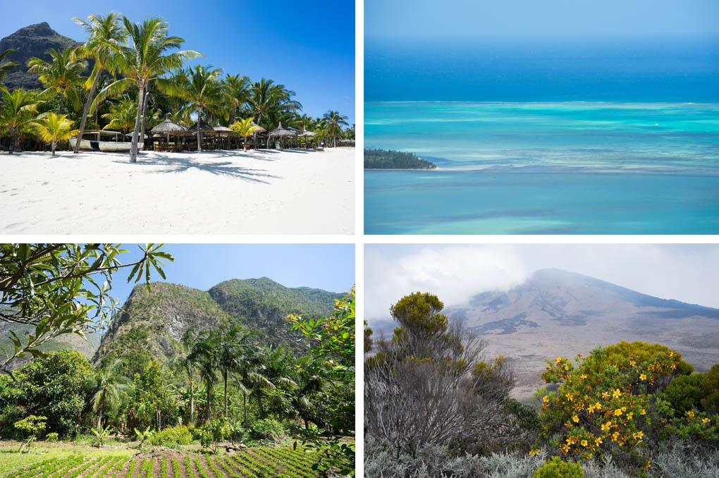 Mauritius Reunion