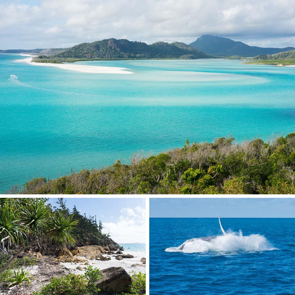 zeilen Whitsunday Islands